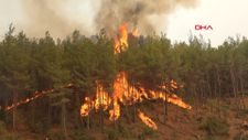 Antalya Beydiğin Çardak mevkinde orman yangını çıktı