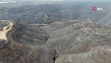 Antalya Manavgat'ta söndürülen alanlar havadan görüntülendi