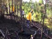 Bursa'da ormanlık alanda çıkan yangın söndürüldü