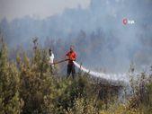 Mersin'de itfaiye erleri yangını söndürmek için mücadele ediyor