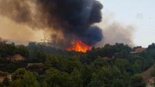 Yunanistan'da orman yangınlarına yenileri eklendi