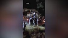 Aydın'da orman yakmak isteyen teröristler iddiası olay çıkardı