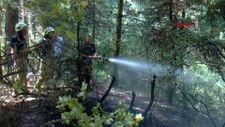 Aydos Ormanı'nda çıkan yangın büyümeden söndürüldü
