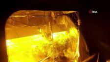 Evini Hint keneviri yetiştirmek için seraya çevirmiş