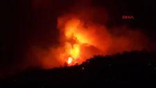 Aydın'daki orman yangınına müdahaleler devam ediyor