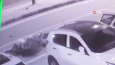 Rize'de sokak köpekleri yoldan geçen kadına saldırdı