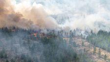 Sibirya'daki orman yangınları yerleşimleri tehdit ediyor