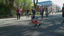 Dünyanın ilk 2 ayaklı koşabilen robotu