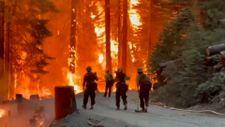 Kaliforniya tarihinin en büyük ikinci yangını devam ediyor