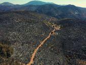 Orman yangınlarının çıktığı Bodrum ve Milas'ın son hali