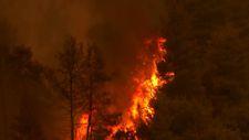 Yunanistan'ın Eğriboz adasında yangın devam ediyor