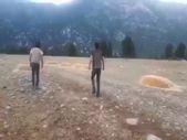 Antalya'da yanan alanlara yılkı atları için saman ve yem bırakıldı