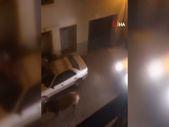 İspanya'da kaçan boğayı durdurmak için araçla çarparak öldürdüler