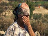 Manavgat'taki yangında kardeşine yardıma giden kişi, evini ve 120 koyununu kaybetti