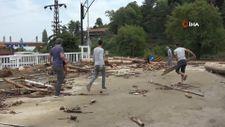 Ayancık'ta vatandaşlar kışlık odunu selden çıkarıyor