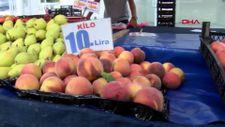 Şeftali ve nektarin bahçede 6 markette 18 lira