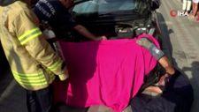 Sultangazi'de kedi kurtarma operasyonu