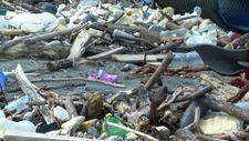 Kastamonu'da selin ardından eşyalar sahile vurdu