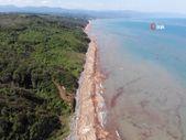 Karadeniz'de sel sularıyla toplanan tomruklar, denizi örtü gibi kapladı