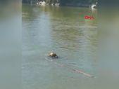 Bilecik'te Sakarya Nehri'ne düşen genç aranıyor