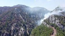Muğla Köyceğiz'de orman yangını