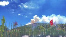 Heybeliada'da orman yangını