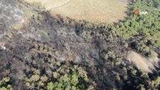 Heybeliada'da yangının bıraktığı hasar havadan görüntülendi