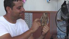Adıyaman'da atmaca yavrusu ile lokantacının dostluğu