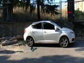 Maltepe'de rüzgarlı havada kırılan ağaç, otomobillere zarar verdi