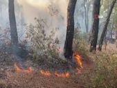 Muğla'daki yangın kontrol altına alındı