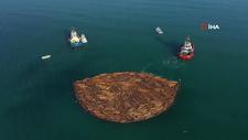Sel felaketinde sahile vuran tomruklar temizlenmeye başladı