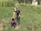 Bolu'da ormana kaçan 16 göçmen kovalamacada yakalandı