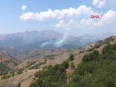 Tunceli'de aynı bölgede yeniden örtü yangını çıktı