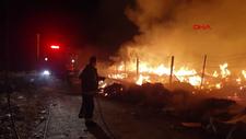 Yalova'da başlayan yangın söndürüldü