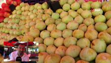 Kayseri'de incir satıcıları seyyar satıcılardan yana dertli