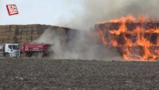Adana'da 30 bin tonluk mısır silajında yangın