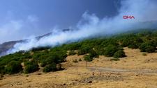 OGM: Orman yangınlarına müdahaleler sürüyor