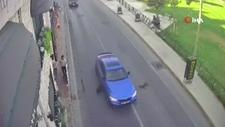 Bakırköy'de iki köpeğe otomobil çarptı