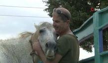 Antalya'da emekli polis, çalınan atını muhbir tutarak buldu