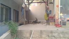 İzmir'de çıktığı çatı çöken itfaiye eri ağır yaralandı