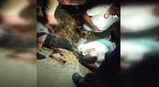 Şanlıurfa'da zincirleme trafik kazası: 1 ölü 6 yaralı