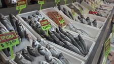 Akdeniz'de sezon açılınca balık fiyatlarının düşmesi bekleniyor