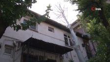 Maltepe'de şiddetli rüzgarda devrilen ağaç evin çatısına düştü