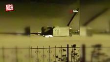 Ardahan'da açlıktan şehre inen ayı çöpleri karıştırdı