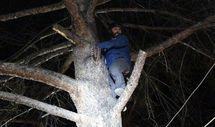 Burdur'da ağacın üzerine inen yamaç paraşütçüsü kurtarıldı