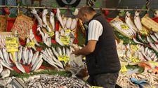 Kocaeli'de balıkçılar, fiyatların ilerleyen günlerde düşeceğine işaret etti