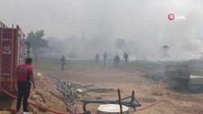 Mersin'de çıkan yangın evlere ulaşmadan kontrol altına alındı