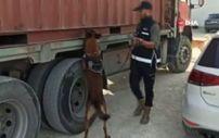 İstanbul'da tütün kaçakçılığı operasyonu