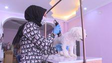 Kayseri'de devlet desteğiyle açtığı kuaför salonunda evcil hayvanları güzelleştiriyor