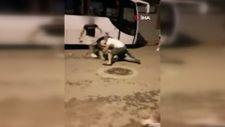 Antalya'da köpeklere elektro şok uygulayan adam sahibine palayla saldırdı